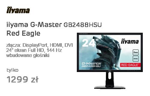 iiyama G-Master GB2488HSU Red Eagle