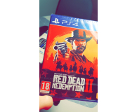 Test Rockstar Games Red Dead Redemption 2