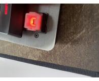 Opinia o Logitech G413 Carbon Tactile
