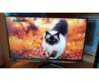 Opinia o Acer Predator XB273UGSBMIIPRZX czarny HDR