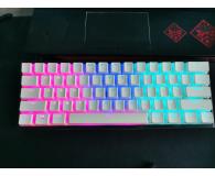 HyperX PBT Pudding Keycap White - szafa