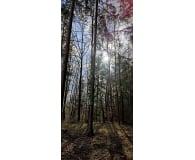 Test OnePlus 9 Pro 5G 12/256GB Pine Green 120Hz