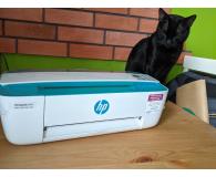 HP DeskJet Ink Advantage 3762  - Jakub