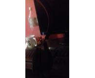 Opinia o  Razer Kraken USB - Kacper