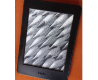 Test  Amazon Kindle Paperwhite 3 4GB special offer czarny - Anna