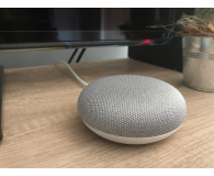 Opinia o  Google Home Mini Chalk - Daniel