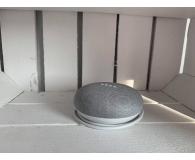 Google Home Mini Chalk - danio