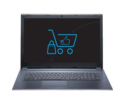 Dream Machines G1060-17 i7-7700HQ/8GB/1TB+120SSD GTX1060-397483 - Zdjęcie 4