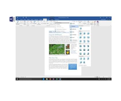 Microsoft Office 2016 dla Użytk. Domowych i Uczniów ESD-404475 - Zdjęcie 5