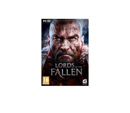 Gra na PC CI Games Lords of The Fallen