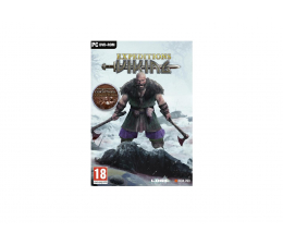 Gra na PC PC Expeditions: Viking