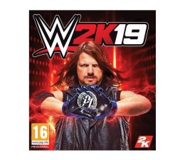 Gra na PC PC WWE 2K19 ESD Steam