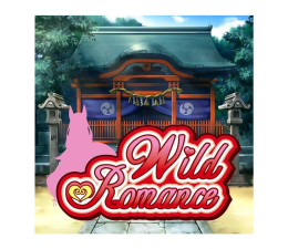 Gra na PC Norn Miel Wild Romance ESD Steam