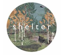 Gra na PC PC Shelter ESD Steam