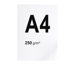 Papier do drukarki A4 ryza 125 szt. 250g/m
