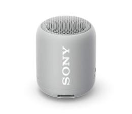 Głośnik przenośny Sony SRS-XB12 Szary