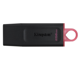 Pendrive (pamięć USB) Kingston 256GB DataTraveler Exodia (USB 3.2 Gen 1)