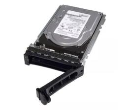 Dysk serwerowy Dell 2TB 7.2K RPM NLSAS 12Gbps 512n 3.5in Hot-Plug