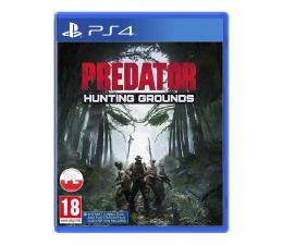 Gra na PlayStation 4 PlayStation Predator