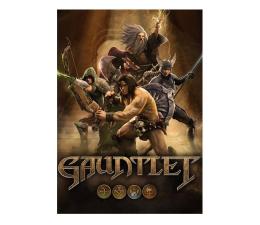 Gra na PC PC Gauntlet ESD Steam