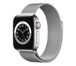 Smartwatch LTE Apple Watch 6 40/Silver Steel/Silver Loop LTE
