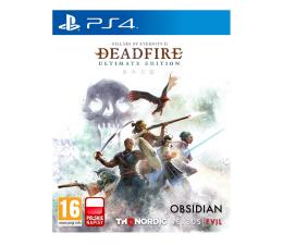Gra na PlayStation 4 PlayStation Pillars of Eternity II: Deadfire