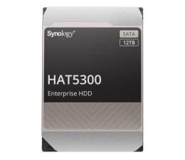 Dysk HDD Synology HAT5300 12TB