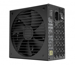 Zasilacz do komputera Fractal Design Ion 550W 80 Plus Gold