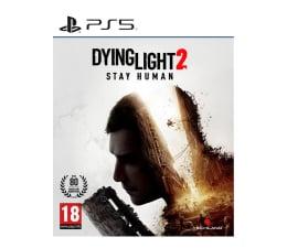 Gra na PlayStation 5 PlayStation Dying Light 2