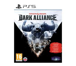 Gra na PlayStation 5 PlayStation Dungeons & Dragons Dark Alliance Steelbook Edition