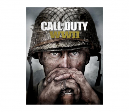 Activision Call of Duty: World War II ESD Steam (307498af-98aa-4c4b-9e87-524160e40e09)