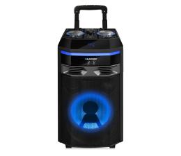 Blaupunkt PS6 (PS6)