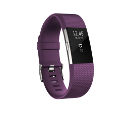 FitBit Charge 2 HR S Plum-Silver (IMFBC2SPU/816137020305)