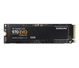 Samsung 250GB 970 EVO M.2 2280 NVMe (MZ-V7E250BW)