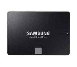 Samsung 500GB 2,5'' SATA SSD 750 EVO (MZ-750500BW)