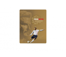 Techland PES 2019 David Beckham Edition  (4012927104019)