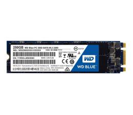 WD 250GB WD Blue SSD M.2 2280 (WDS250G1B0B)