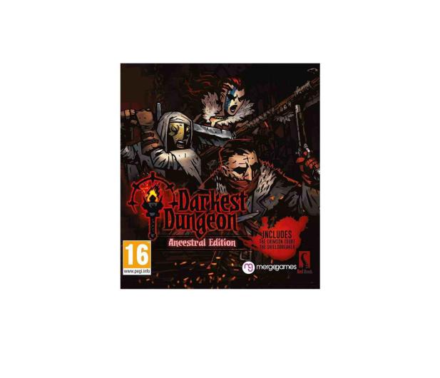 Red Hook Studios Darkest Dungeon ESD Steam - 463635 - zdjęcie