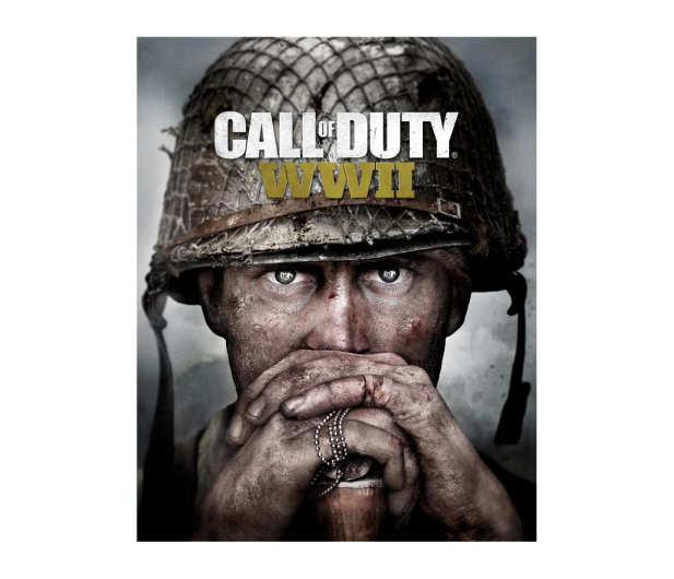 Activision Call of Duty: World War II ESD Steam - 463598 - zdjęcie