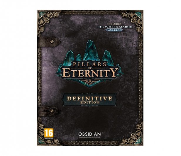 PC Pillars of Eternity Definitive Edition ESD Steam - 466789 - zdjęcie
