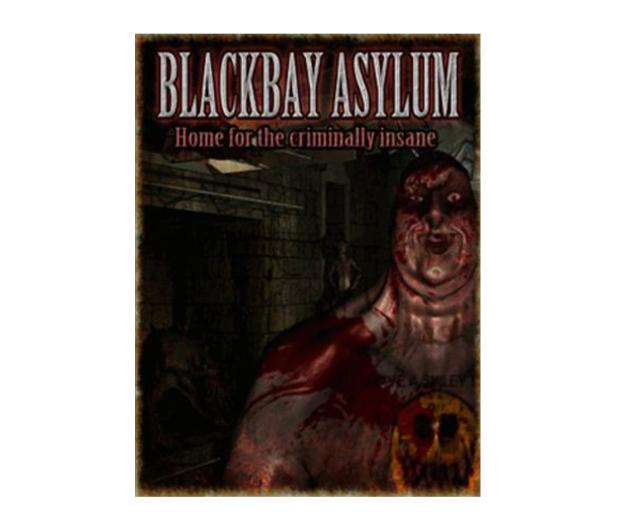 PC Blackbay Asylum ESD Steam - 465636 - zdjęcie