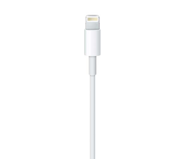 Apple Kabel do iPhone, iPad 1m  - 434540 - zdjęcie 2