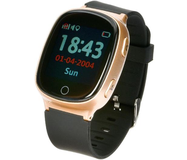 Garett GPS 3 złoty - 442853 - zdjęcie
