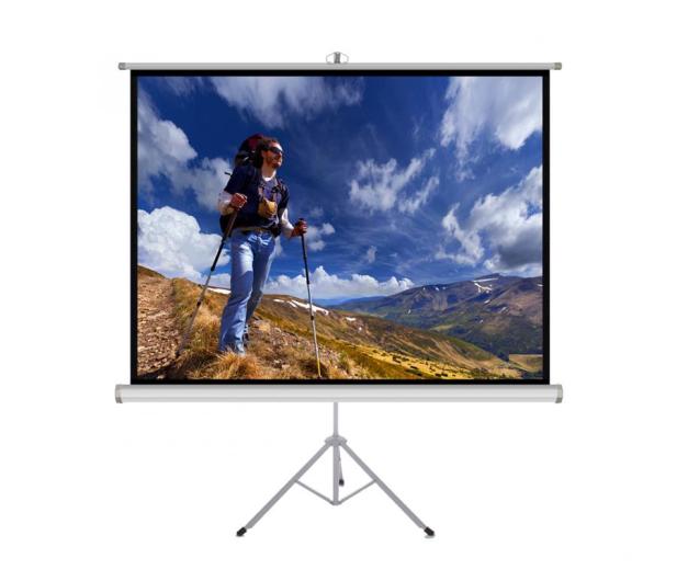 """ART Ekran ręczny na statywie 118"""" 213x213cm 1:1  - 482965 - zdjęcie"""