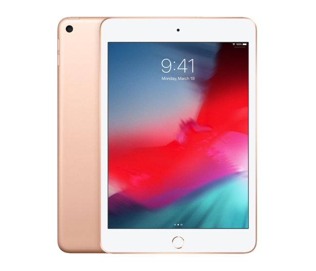 Apple iPad mini 256GB Wi-Fi Gold - 486981 - zdjęcie