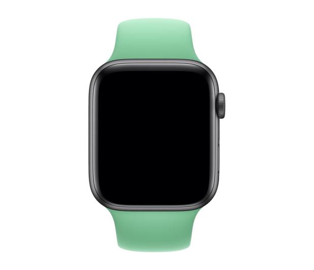 Apple Pasek Sportowy do Apple Watch stonowana mięta - 487983 - zdjęcie 2