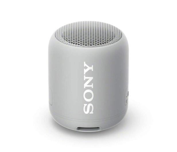 Sony SRS-XB12 Szary - 506783 - zdjęcie