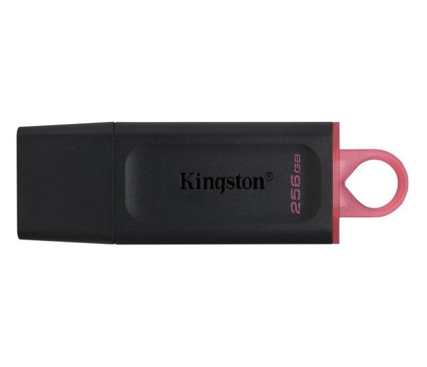 Kingston 256GB DataTraveler Exodia (USB 3.2 Gen 1) - 597883 - zdjęcie