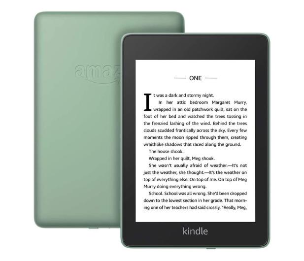 Amazon Kindle Paperwhite 4 32GB IPX8 zielony - 606403 - zdjęcie