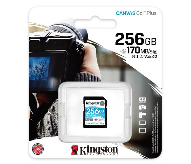 Kingston 256GB Canvas Go! Plus 170MB/90MB (odczyt/zapis) - 550472 - zdjęcie 3